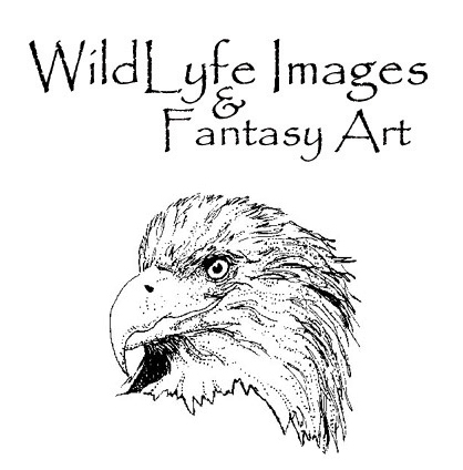 Wildlyfeimages logo